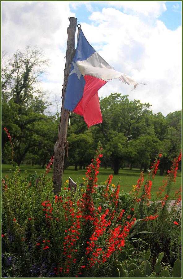 Flag Photograph - Texas Glory by Valerie Loop