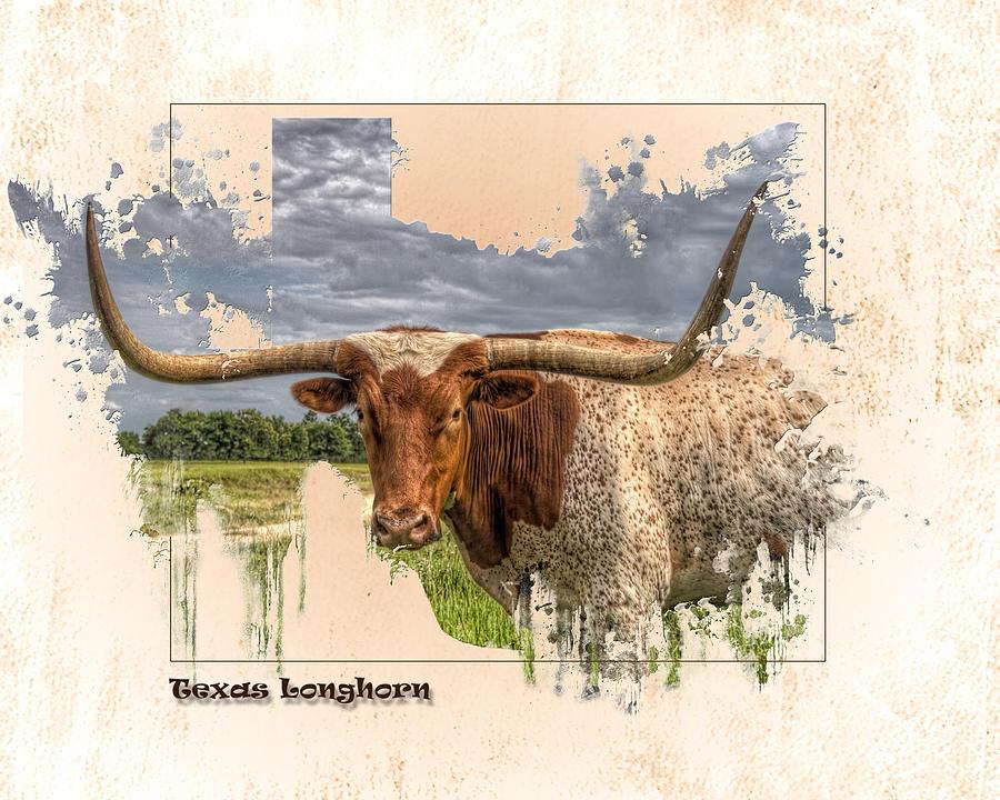 Texas Longhorn Digital Art - Texas Longhorn by Ray Keeling