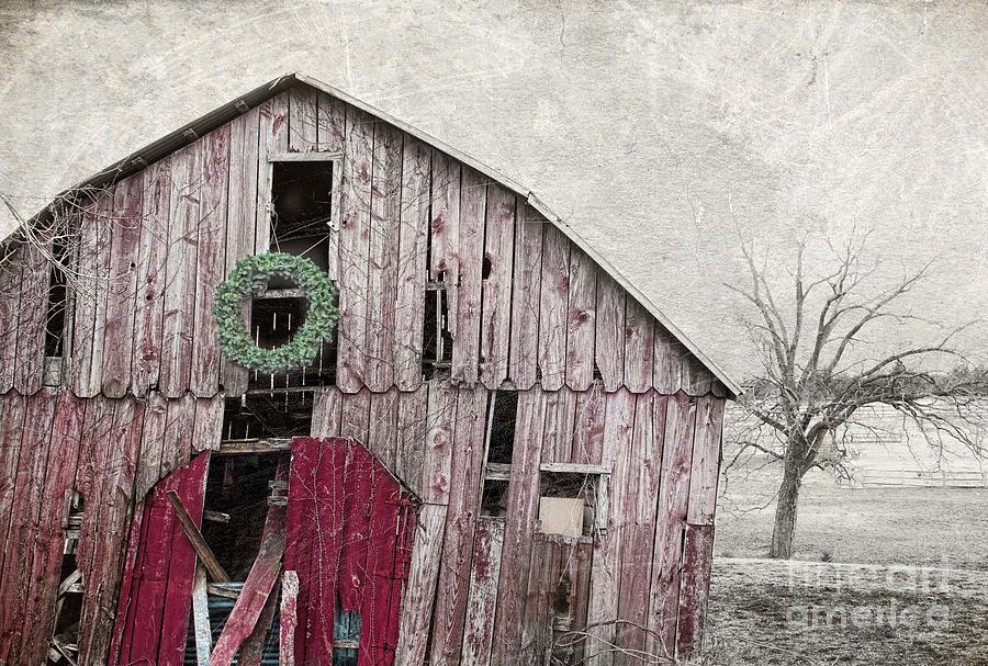 Red Barn Photograph - Texas Manger by Elena Nosyreva