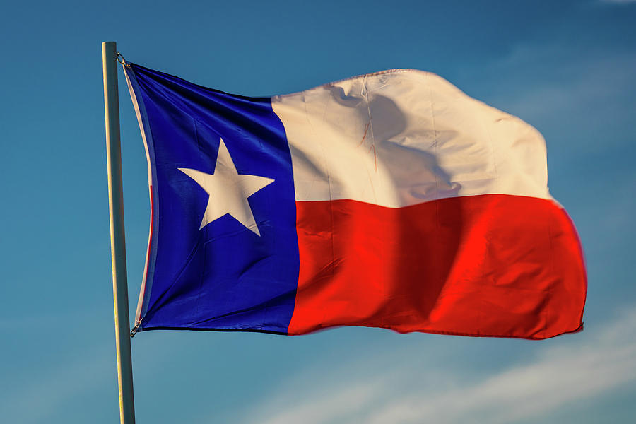 Image result for texas state flag