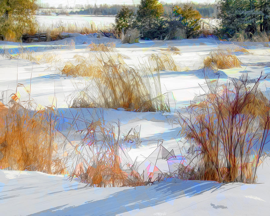 Textured By Winter Photograph
