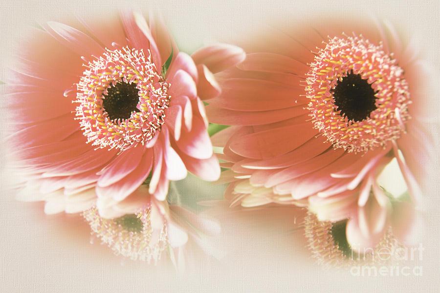 Textured Floral Artwork by Eden Baed