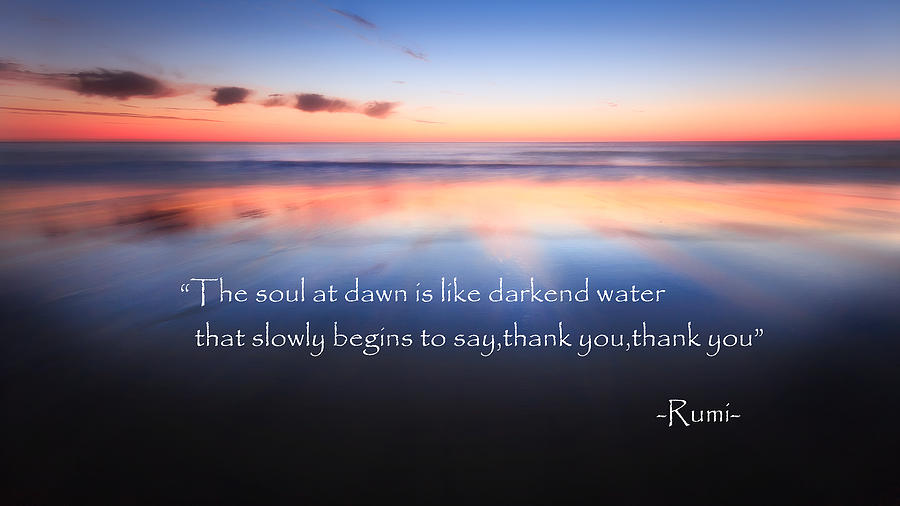 Rumi Photograph - Thank You by Bill Wakeley