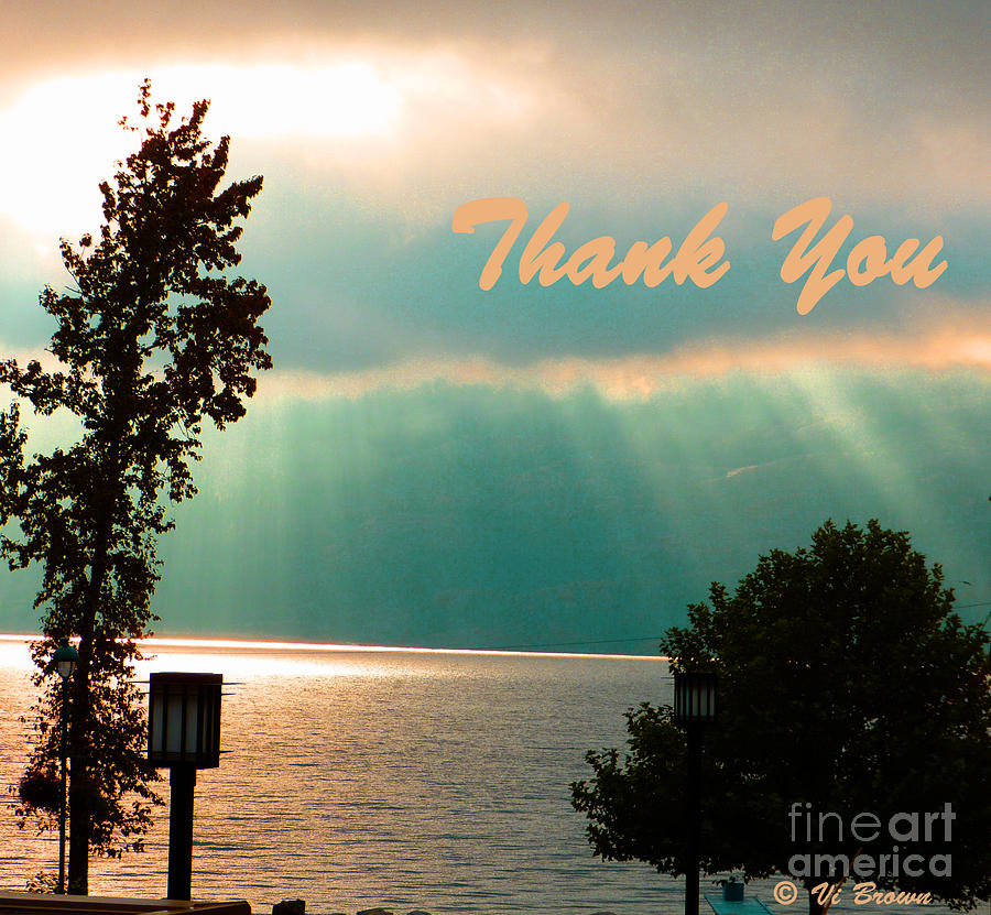 Greeting Card Photograph - Thank You  by Vi Brown