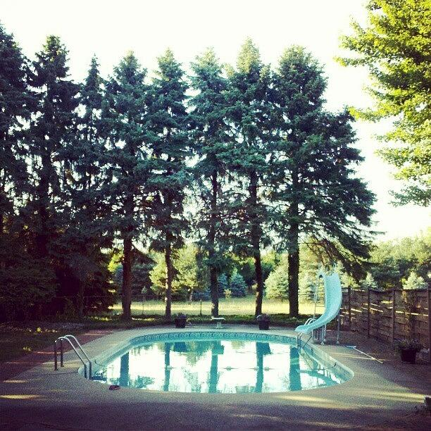 Pine Tree Photograph - That Pool Looks Nice And Cool by Jill Tuinier