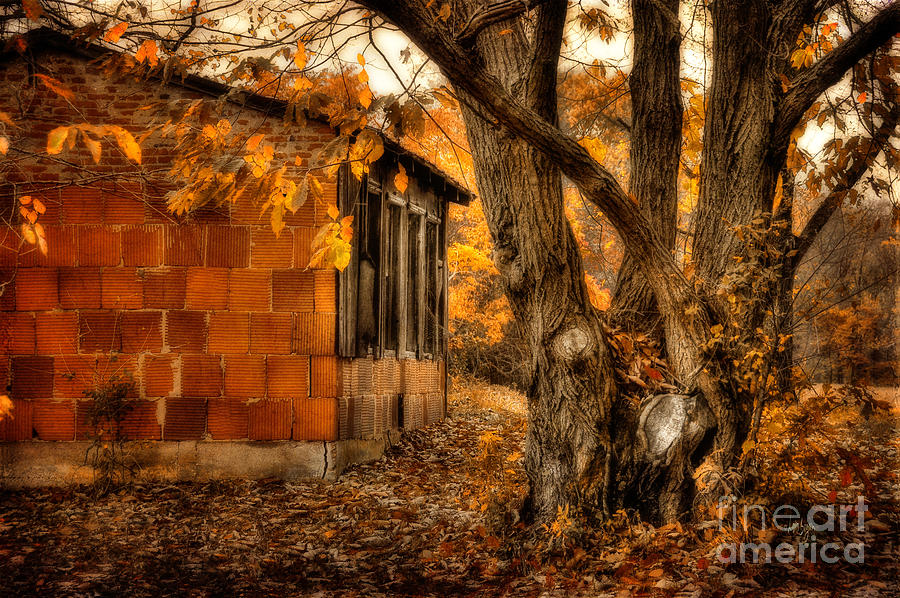 Barn Photograph - That Which Defines Us by Lois Bryan