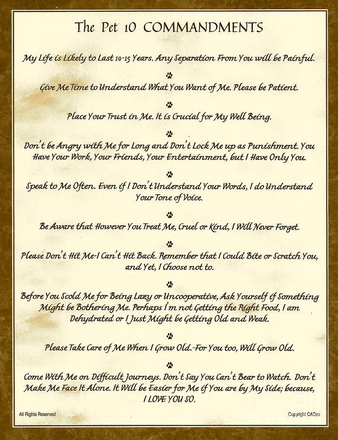 The 10 Commandments For Pets Antique Marble Mixed Media by Desiderata ...