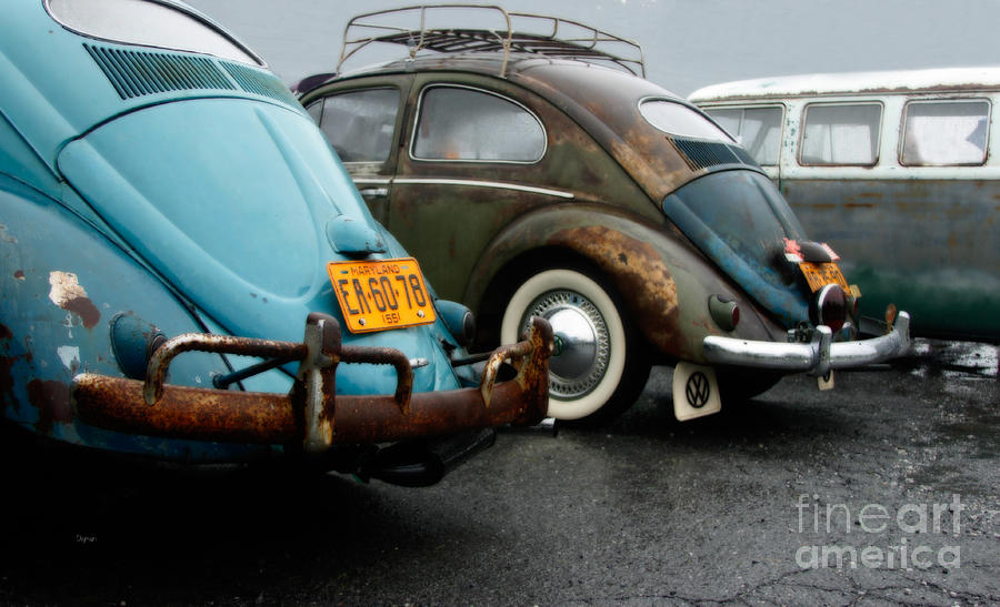 Vw Photograph - The 1955s by Steven Digman