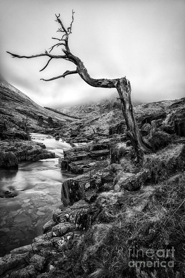 Cold Photograph - The Accusing Finger by John Farnan