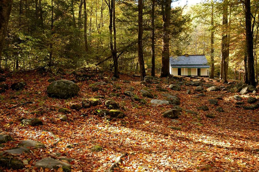Roaring Fork Nature Trail Photograph - The Alfred Reagan Cabin Autumn by John Saunders