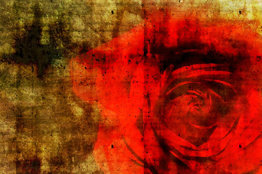 Brett Digital Art - The Allure Of A Rose by Brett Pfister