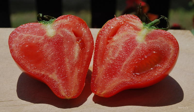 Food Photograph - The Art Of Nature by Marija Djedovic