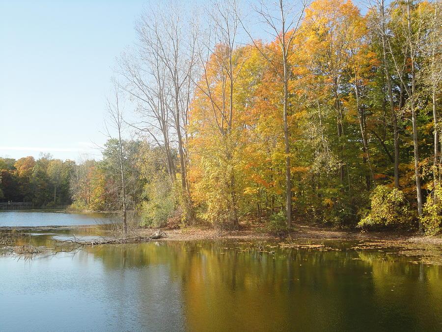 Guy Ricketts Photography Photograph - The Autumn Lake by Guy Ricketts