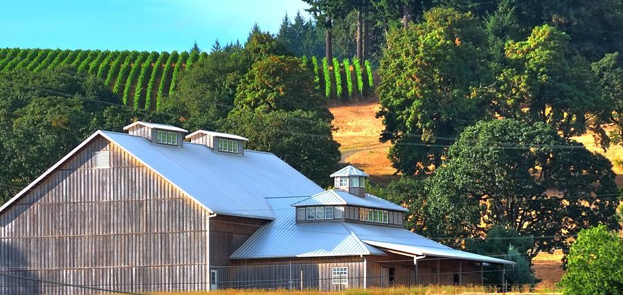The Barn 17936 Photograph