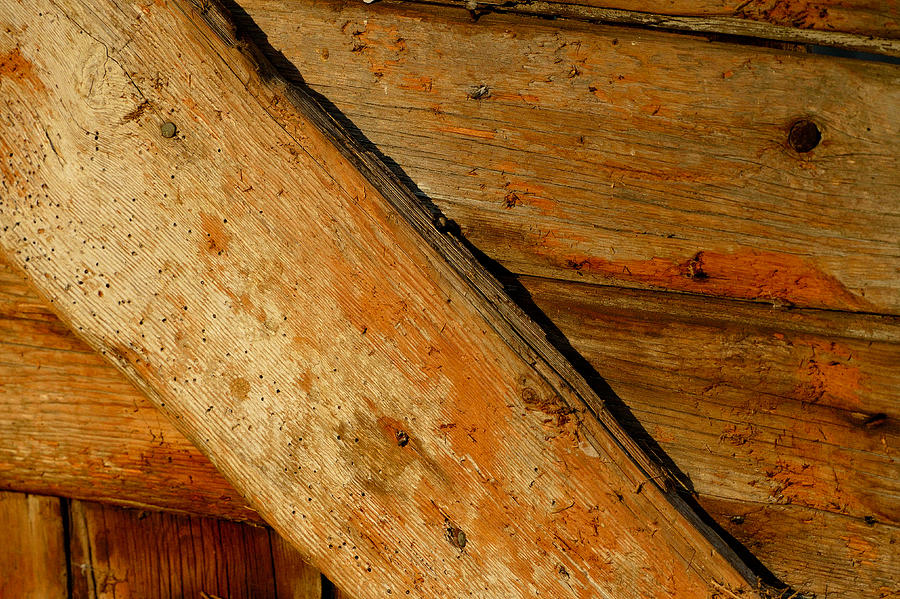 Barn Photograph - The Barn Door by William Jobes