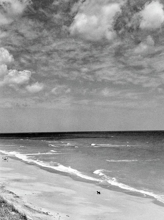 The Beach At Hobe Island Photograph by Serge Balkin