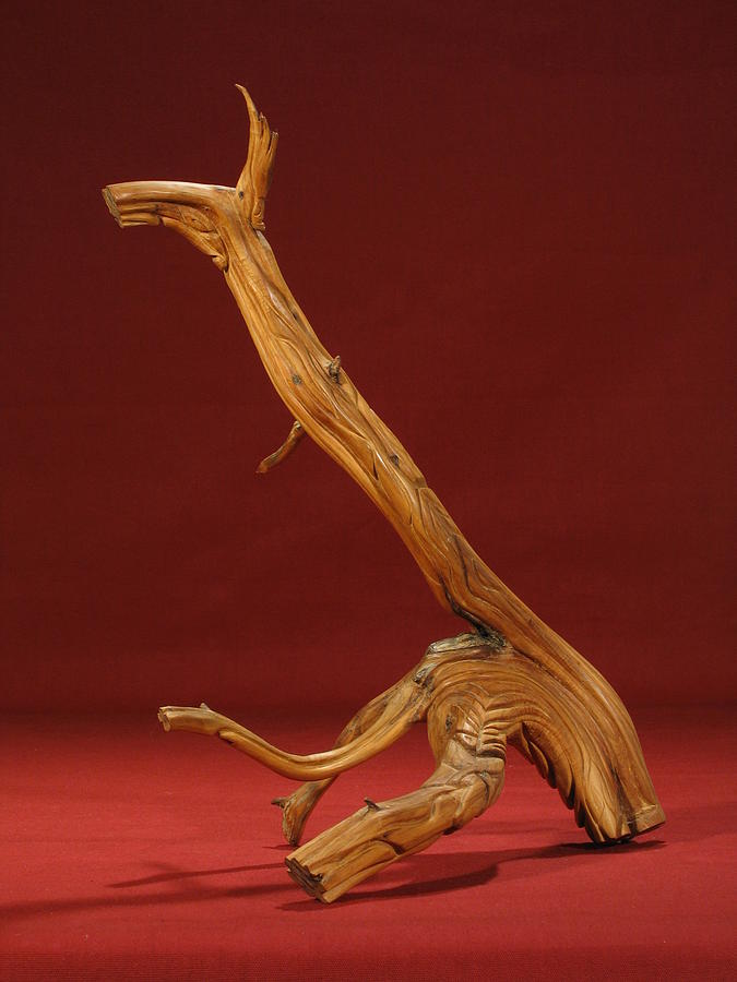 Cedar Sculpture - The Beast by Pimba