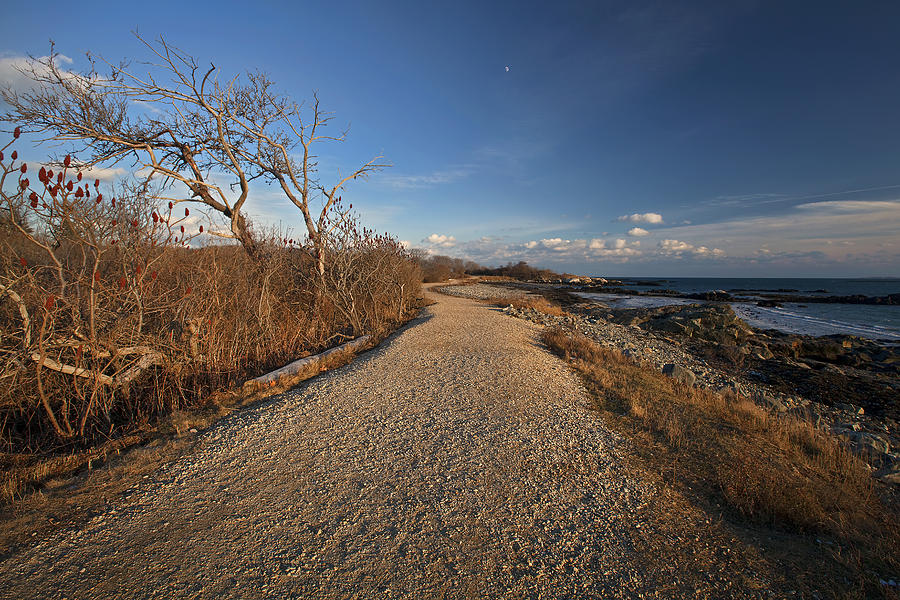 Beaten Path Photograph - The Beaten Path by Eric Gendron