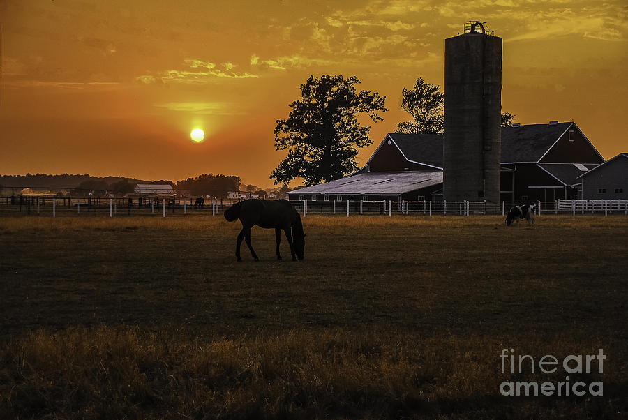 Sky Photograph - The Beauty Of A Rural Sunset by Mary Carol Story