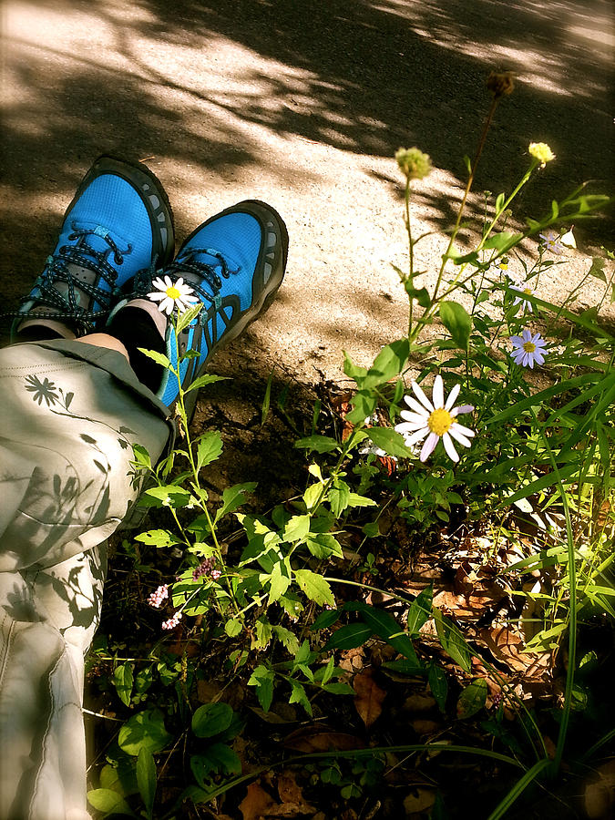 Wild Flowers Photograph - The Beauty Of Idleness by Yen