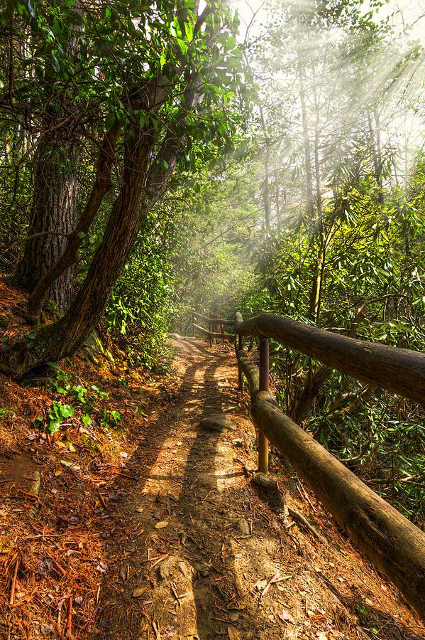 Appalachia Photograph - The Benton Trail by Debra and Dave Vanderlaan