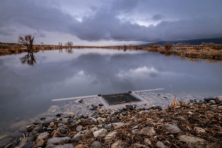 Pond Photograph - The Big Drain by Cat Connor