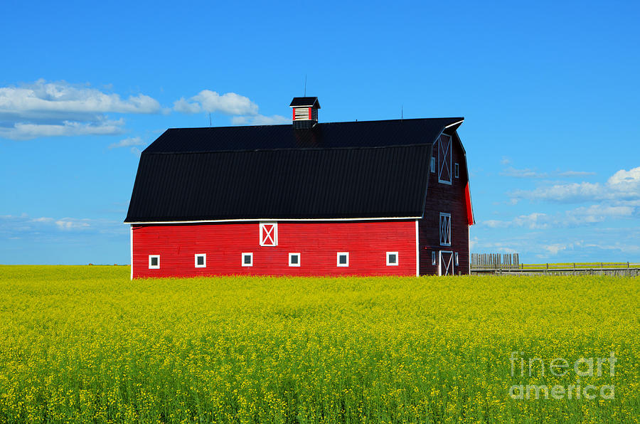 Barn Photograph - The Big Red Barn by Bob Christopher