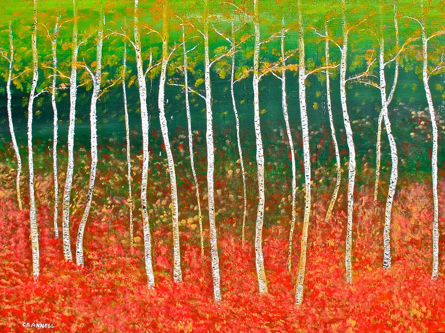 Tree Photograph - The Birches by Mark Prescott Crannell