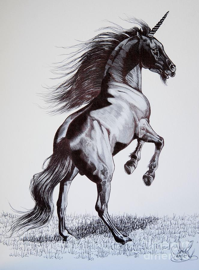 The Black Unicorn Drawing By Cheryl Poland
