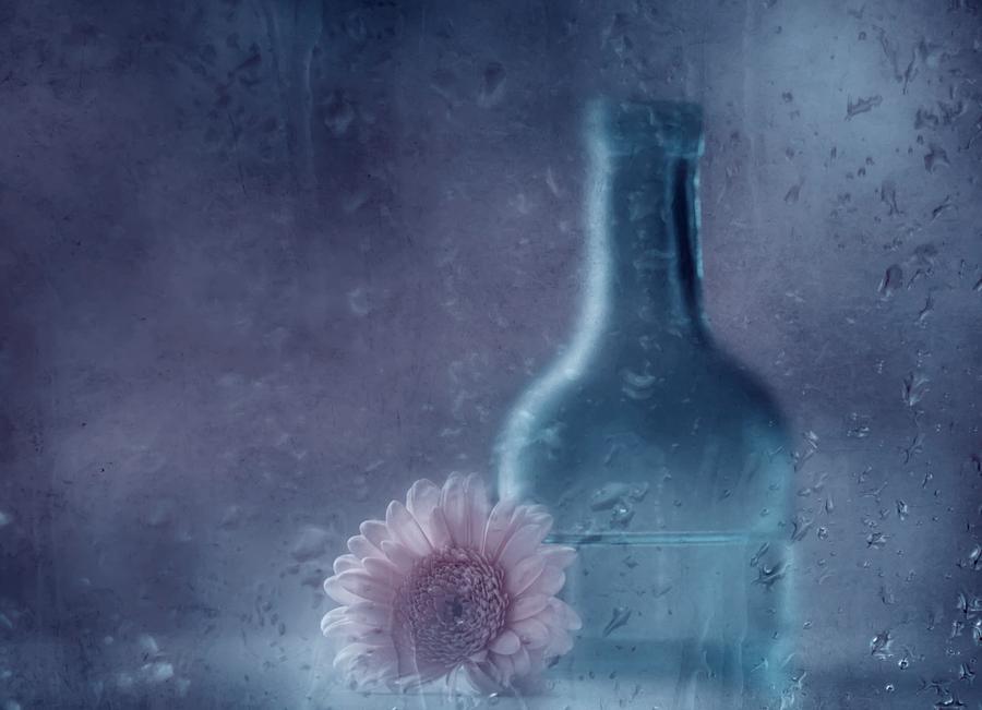 Still Life Photograph - The Blue Bottle by Delphine Devos