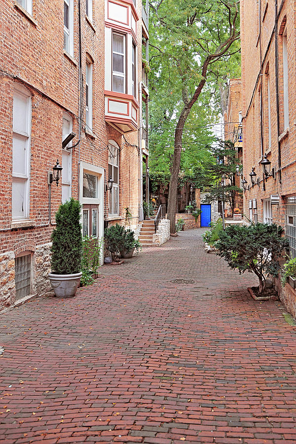 Chicago Photograph - The Blue Door - Gaslight Court Chicago Old Town by Christine Till