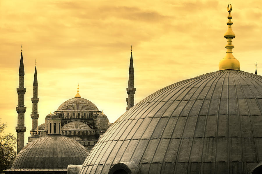 The Blue Mosque Photograph by Tolga Tezcan
