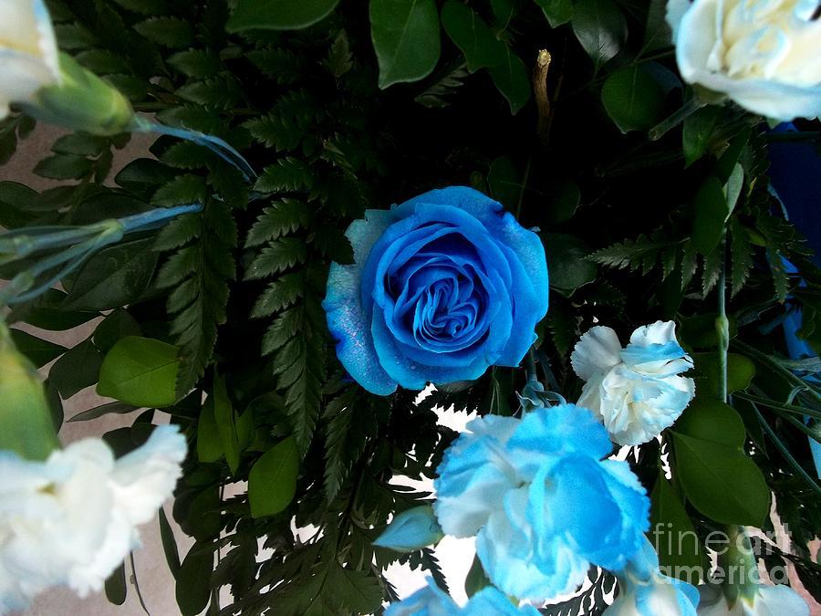 The Blue Pair Photograph by Vladimir Berrio Lemm