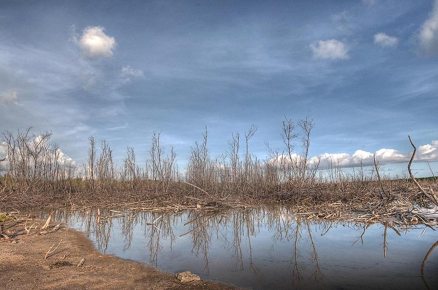 Desert Photograph - The Blue Water Desert by Imago Capture