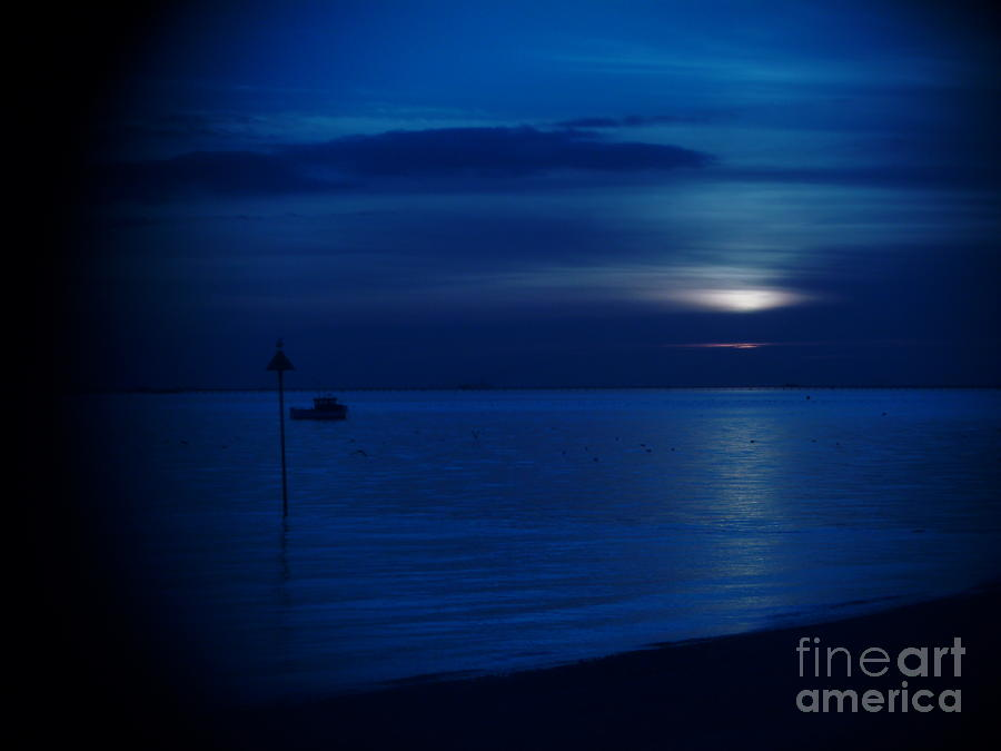 Blue Photograph - The Blues by Vicki Spindler