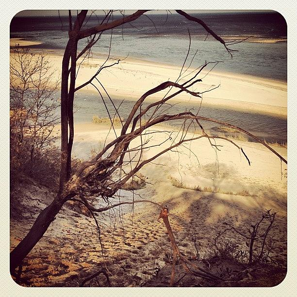 Beach Photograph - The Bluff by FC Designs