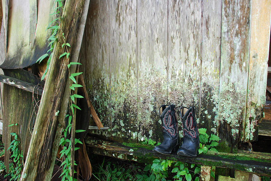The Boots They All Wore by Beverly Stapleton