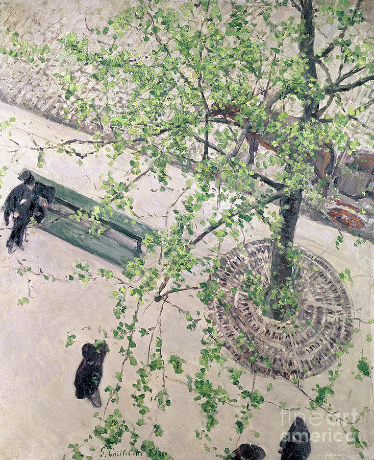 Street Scene Painting - The Boulevard Viewed From Above by Gustave Caillebotte