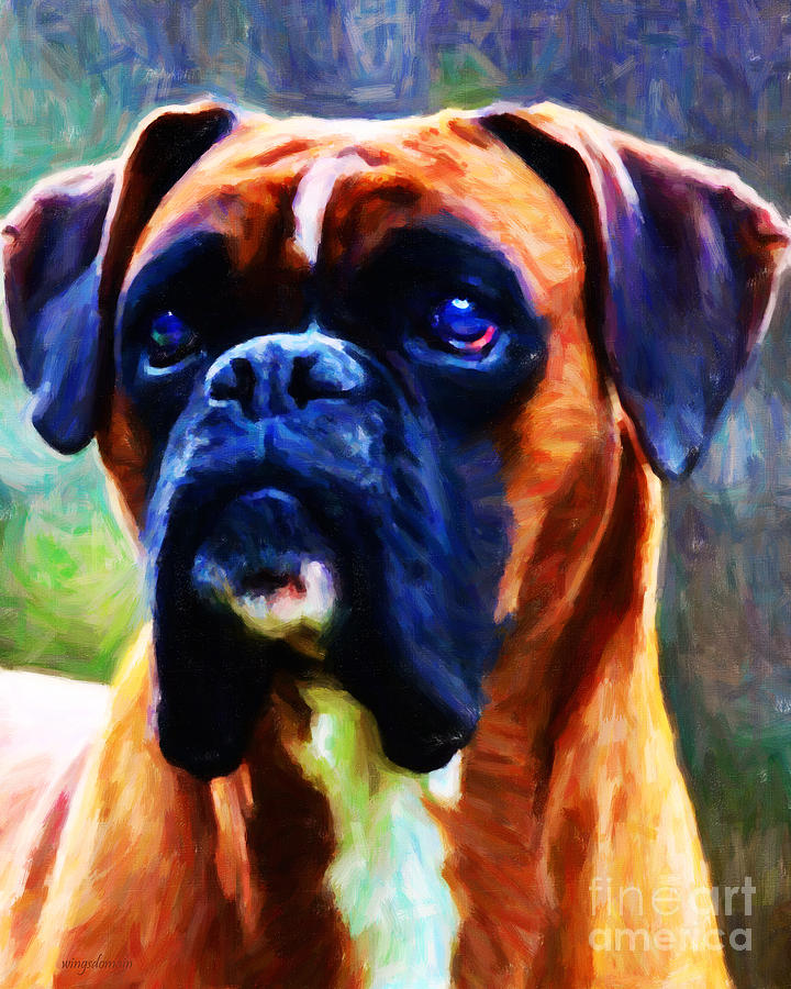 Animal Photograph - The Boxer - Painterly by Wingsdomain Art and Photography