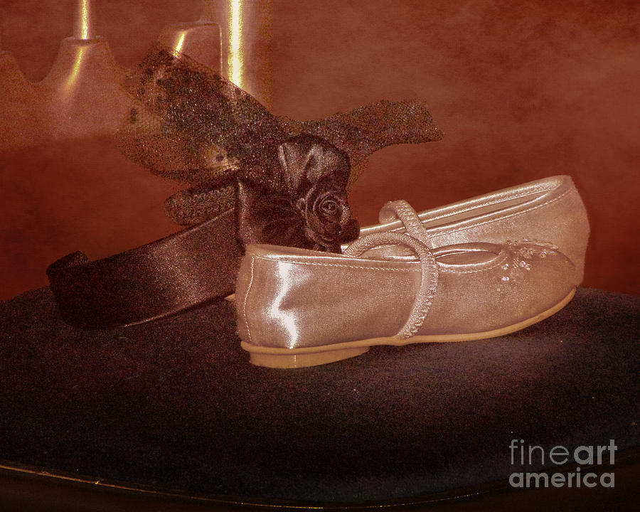 Satin Photograph - The Bridesmaids Shoes by Terri Waters