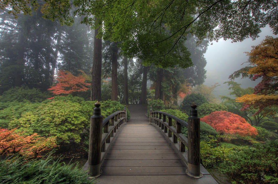 Bridge Photograph - The Bridge In Japanese Garden by David Gn