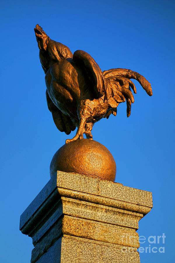 France Photograph - The Bronze Rooster by Olivier Le Queinec