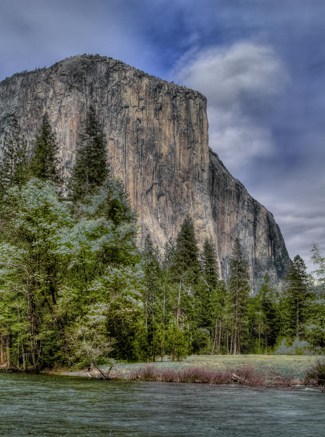 Yosemite Photograph - The Captain by Bill Gallagher