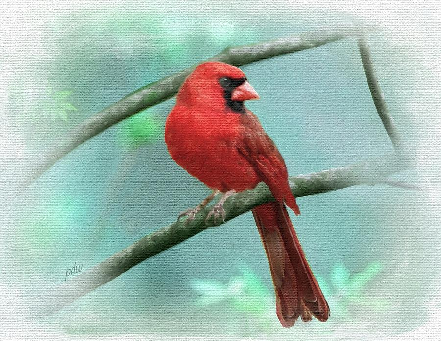 Birds Painting - The Cardinal Experience 1 by Philip White