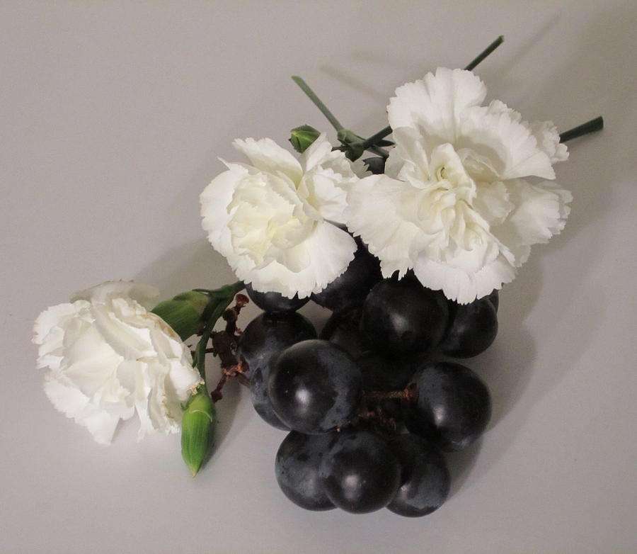 Black Grapes Photograph - The Carnation Bunch by Good Taste Art