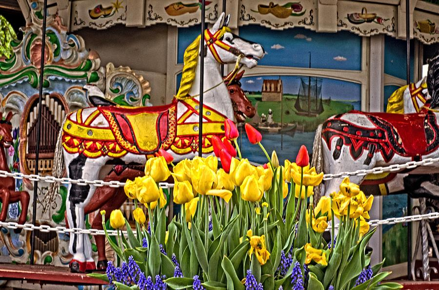 Carousel Photograph - The Carousel by Cheryl Cencich