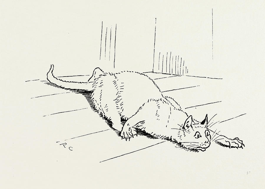 Line Drawing Rat : The cat that ate rat drawing by english school