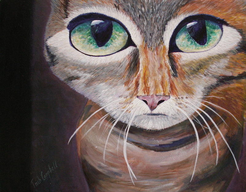 Cats Painting - The Cat by Trish Campbell