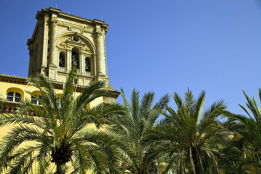 Andalucia Photograph - The Cathedral Of The Incarnation by John Rocha