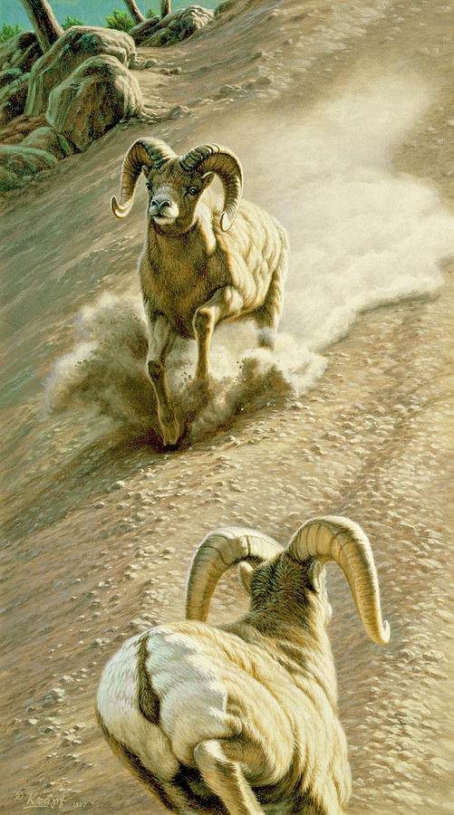Wildlife Painting - The Challenge by Paul Krapf